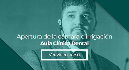 Endodoncia: Apertura de la cámara e irrigación